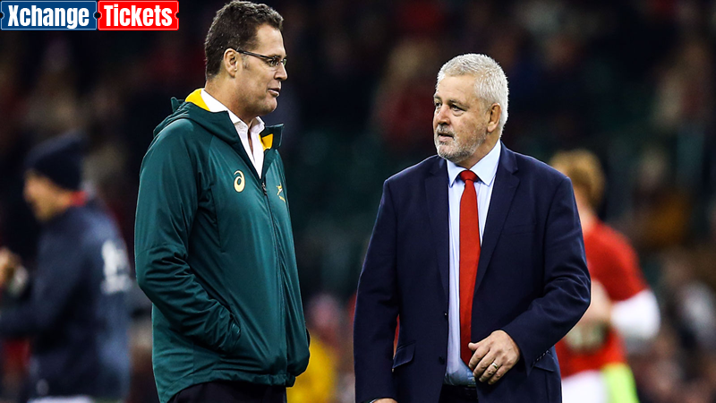 Nienaber: Lions will have their ducks in a row