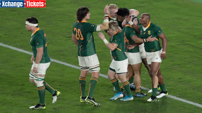 SA Rugby fans get the bargain of the century for Lions tour