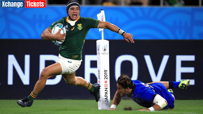 Springboks Kolbe eyes incredible Lions tour